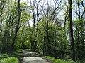 Unna, Germany - panoramio (8).jpg