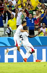 Uruguay - Costa Rica FIFA World Cup 2014 (20).jpg