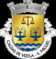 VIZ-smiguelcaldasvizela.png