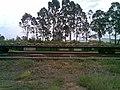 Vagão carregado de dormentes novos no pátio da Estação Ferroviária de Itu - Variante Boa Vista-Guaianã km 202 - panoramio.jpg