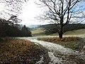Valley below Great Wood - geograph.org.uk - 96417.jpg