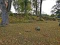 Vecpiebalgas baznīcas viduslaiku kapsēta (1).jpg