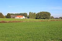 Verkeerdhof, Duivelswilg, Velzeke-Ruddershove 03.jpg