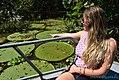 Victoria Amazônica.jpg