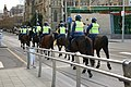 Victoria Police, Mounted.JPG
