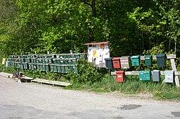 Postkasser ved Helmerdalsvägen i Vidje.
