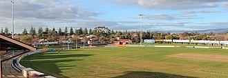 Glenelg East, South Australia - View to north east from Glenelg Oval, Glenelg East and Norfolk Pines along tramline in the background