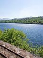 View of Llyn Pendarn Lake (7966155552).jpg