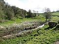 View of River Bradford - geograph.org.uk - 1240757.jpg