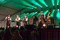 Viljandi folk music festival tent.JPG