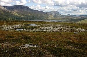 Vindelfjällen Nature Reserve - Image: Vindelfjällen