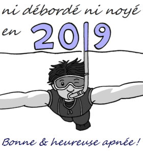 Voeux Flopinot 2019.png