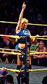 WWE NXT 2015-03-28 00-10-07 ILCE-6000 3880 DxO (16746689143).jpg
