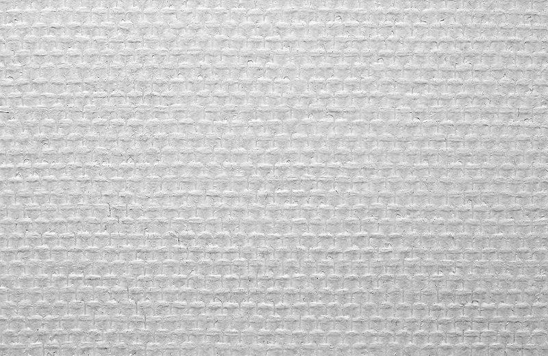 Canvas White Deck Shoe Whitening