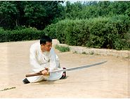 Wang Zhihai MiaoDao
