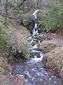 Water Falls - West side of Burrator Reservoir - geograph.org.uk - 643433.jpg