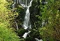 Waterfall, Crawfordsburn Glen (3) - geograph.org.uk - 767804.jpg