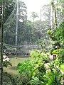 Waterfall Aviary (7856745104).jpg
