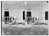 Weli of Budrieh at Sherafat and the preparing of a sacrifice. The sacrifice LOC matpc.06372.jpg