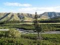 West Coast Rd - panoramio (2).jpg