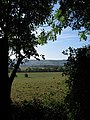 West Field - geograph.org.uk - 1509006.jpg