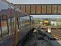 Westbury railway station MMB 17 158953.jpg