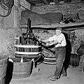 Wijnboer Römer perst zijn druiven met de oudste handpers in Kröv, Bestanddeelnr 254-4219.jpg