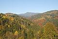 Wildbachtal breit.jpg