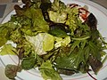 Wildkräuter Salat - panoramio.jpg