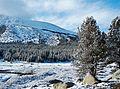 Winter Morning, Tuolumne Meadows, Yosemite 5-15 (27574149141).jpg