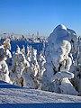 Winter Scene In Ruka Finland - panoramio.jpg