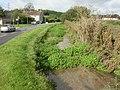 Winterbourne Steepleton, South Winterborne - geograph.org.uk - 1529509.jpg