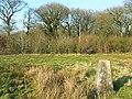 Worthy Hill Farm triangulation pillar, Ravensroost Wood - geograph.org.uk - 1234540.jpg