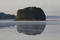 Wyspa latem na jeziorze Isąg w rezerwacie przyrody Ostoja Bobrów na rzece Pasłęce.JPG