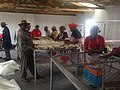 Xhosa Villagers Shaving their sheep for wool manufacturing 4.jpg