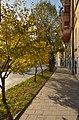 Yaroslava Mudroho Street, Lviv (04).jpg