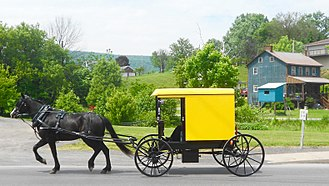 Byler Amish - Yellow topped buggy of the Byler Amish in Belleville, Pennsylvania