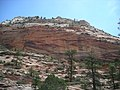Zion NP July 2007 09.jpg