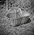 """Košica"" (za krompir pobirat), dolžina 53cm, šir. 31cm, viš. 23cm. Kočarija 1956.jpg"