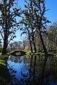 Браїлів Садиба фон Мекк, Парк.jpg