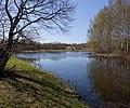 Весна в Озерковом парке. Саперный пруд. Вид с востока на пруд, остров и поселок Сашино..jpg