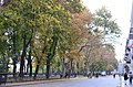 Виды Приморского бульвара. Фото 3.jpg