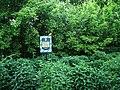 Дубовий гай з природною водоймою 04.JPG