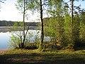 ЗЕЛЕНОГОРСК - Ефрейторское озеро - ТЬМА и СВЕТ (15).JPG