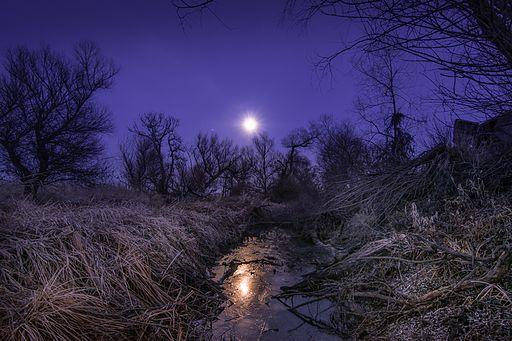 Зимовий місячний вечір