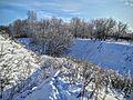 Кашин, Горсад - panoramio (6).jpg