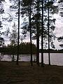 Малое Кирилловское озеро..jpg