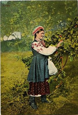 «Малороссийские типы. В садку». 1890-е