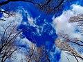 Небо над Трахтемировом.jpg