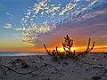 Неймовірні заходи сонця на Кінбурнській косі (7).jpg